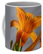 Tiger Lily Coffee Mug