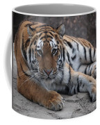 Tiger Love Coffee Mug