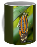 Tiger Mimic Queen Butterfly Coffee Mug