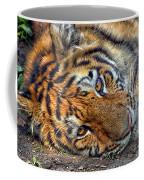 Tiger Nap Time Coffee Mug