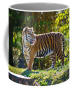 Tiger On The Prowl Coffee Mug