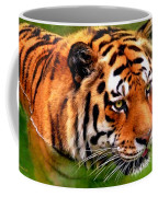 Tiger Painting Coffee Mug