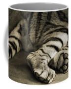 Tiger Paws Coffee Mug