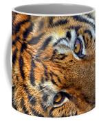 Tiger Peepers Coffee Mug