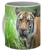 Tiger Portrait Coffee Mug