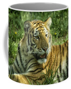 Tiger Resting Coffee Mug
