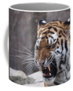 Tiger Smile Coffee Mug