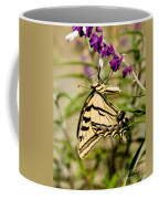 Tiger Swallowtail Butterfly Feeding Coffee Mug