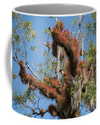 Tikal Furry Tree Closeup Coffee Mug