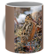 Timberdoodle The American Woodcock Coffee Mug