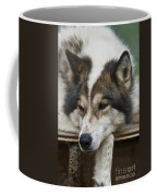 Time For A Rest Coffee Mug