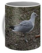 Time For Lunch Coffee Mug