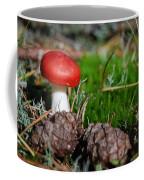 Tiny Amanita In Norway Coffee Mug