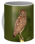 Tiny Burrowing Owl Coffee Mug