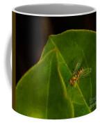 Tiny Fly Coffee Mug