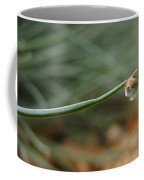 Tiny Morning Dew Coffee Mug
