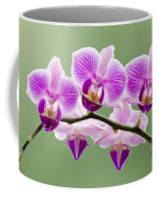 Tiny Orchid Faces Coffee Mug