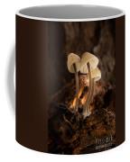 Tiny Toadstools Coffee Mug
