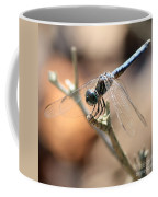 Tired Dragonfly Square Coffee Mug