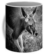 Tired Old Kangaroo Coffee Mug
