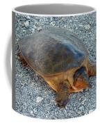 Tired Turtle Coffee Mug