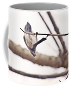 Titmouse Pull-ups Coffee Mug