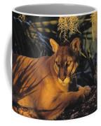 Tk0397, Thomas Kitchin Florida Panther Coffee Mug