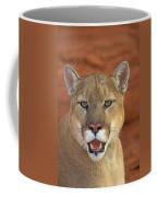 Tk0460, Thomas Kitchin Cougarmountain Coffee Mug