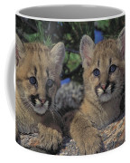 Tk0615, Thomas Kitchin Cougarmountain Coffee Mug