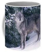 T.kitchin, 19821c Gray Wolf, Winter Coffee Mug