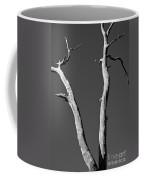 To The Moon Coffee Mug by Steven Ralser
