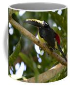 Toco Toucan Amazon Jungle Brazil Coffee Mug