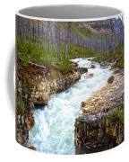 Tokuum Creek Flowing Into Marble Canyon In Kootenay Np-bc Coffee Mug