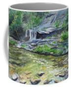 Tom Branch Falls Coffee Mug