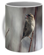 Tongue Of The Sparrow Coffee Mug