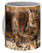 Too Bright Coffee Mug