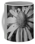 Too Wide Bw Coffee Mug