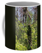 Top Of The Glades Coffee Mug