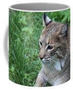 Tough Cat Coffee Mug
