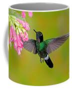 Tourmaline Sunangel Hummingbird Coffee Mug