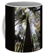 Towering Timber Coffee Mug