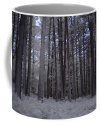 Towering Trees Over Ferns In Blue Coffee Mug