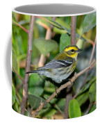 Townsends Warbler In Tree Coffee Mug