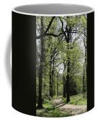 Track Trough The Woods Coffee Mug
