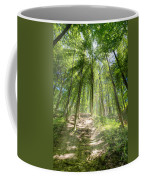 Trail In The Forest Coffee Mug
