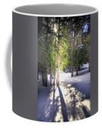 Trail To Bear Lake 4490 Coffee Mug