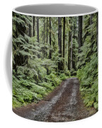 Trail To Jaw Bone Flats Coffee Mug