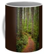trail to Lower Lewis Falls Coffee Mug