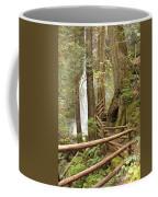 Trail To Waterfall Coffee Mug