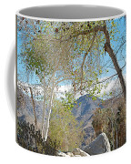 Trailhead Area In Andreas Canyon In Indian Canyons-ca Coffee Mug